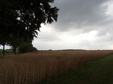 An (unkept) promise of rain.